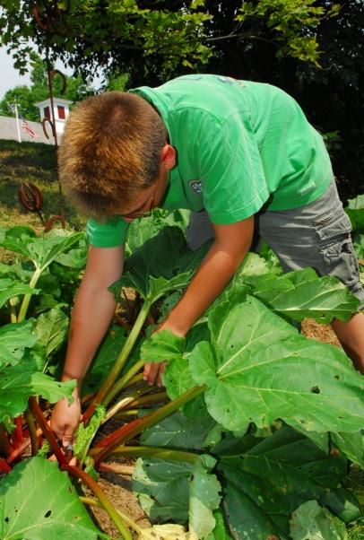 student planting in school garden
