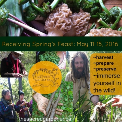 Receiving Spring's Feast – Wild Food Workshop